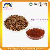 Extrait végétal d'extrait de graine de raisin pour soins de la peau