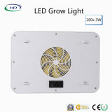 3W*100PCS wachsen Plastikgehäuse LED für Innenpflanzenbeleuchtungen hell