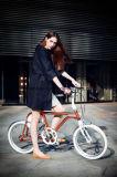 rétro bicyclette 250W électrique avec 36V/4.8ah