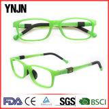 Ynjn logotipo personalizado gafas de colores Eyewear niños (YJ-G81258)