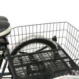 Triciclo grande de 24 pulgadas de tres ruedas de carga eléctrica con cabina para ancianos