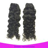 Волосы малайзийца девственницы новой волны Джексон оптовой продажи прибытия Unprocessed