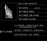 Constructeur clair Btr-H6307-2 de support de brochure de pneus du plastique A6 3