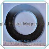 Magnete di anello a resina epossidica nero del neodimio del rivestimento
