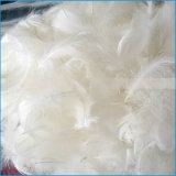 Pena de pato de ganso branco ou cinza lavado