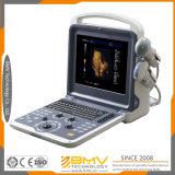 Портативные ветеринарные системы ультразвука Bcu-40