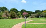 재상할 수 있는 태양 에너지를 가진 수정같은 태양 강화된 훈장 정원 빛 아름다운 빛냄 효과