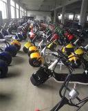 De hete Elektrische die Scooter van de Verkoop in de Fabriek van China wordt gemaakt