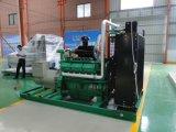 Chip und Getreide-Lebendmasse-Gas-Generator-Set wassergekühltes Fow Minikraftwerk-Kochen industrielle Generator-hochwertiges China-Lvhuan 250kw hölzernes