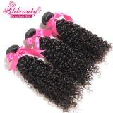 Волосы Shenzhen выдвижения волос новой девственницы деталей глубокой курчавой бразильские оптовые