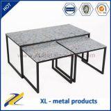 La pittura descrive il tavolino da salotto concentrare di vetro del metallo