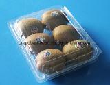 Fruta de kiwi que empaqueta la bandeja de empaquetado de la fruta fresca de la caja plástica