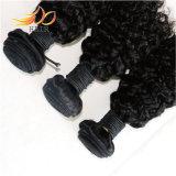 最上質の加工されていない巻き毛のマレーシアのバージンの毛のよこ糸