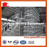 Gaiola automática do equipamento da exploração avícola para a galinha da franga da grelha da camada