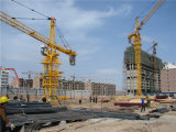 Hstowercrane著重量物運搬のCrane中国製