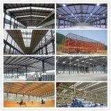 Stahlkonstruktion-Arena für Pferden-Reiten