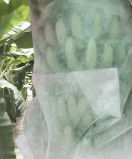 Polipropileno Spunbond Tecido não tecido para saco de banana