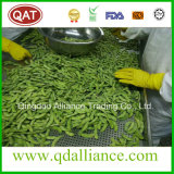 Sementes do feijão de soja da qualidade superior IQF