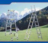 望遠鏡の梯子