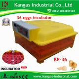 Petite Machine de l'éclosion des oeufs adapté pour l'utilisation de la famille (KP-36)