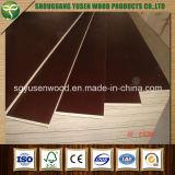 WBP impermeable de encofrado de madera contrachapada película hizo frente