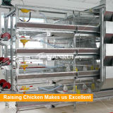 H печатает курочку на машинке поднимая оборудование для цыпленка младенца