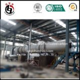 Chaîne de production par constructeur de charbon actif de la Chine