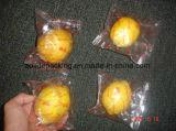 Fruits frais de Foshan Dession et machine à emballer de légume avec le moteur servo
