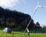 쉬운 가정 옥상은 풍력 발전기 세트를 설치한다