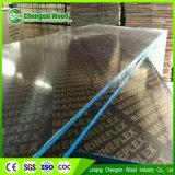 ポプラまたはシラカバまたは堅材のコア海洋の合板か閉める合板またはフィルムは直面した構築(HB001)のための合板に