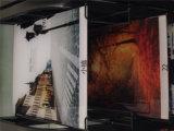 Vidro de imagem de tamanho superpurado para parede doméstica