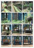 De Dienst van de adviseur voor Staalfabriek (Industrie) voor Specifieke Staaf Tmt/Misvormde Rebar/Reber (in het Land van Afrika)