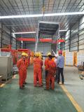 Bonne performance de l'élévateur à chaînes de matériaux de construction de construction