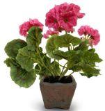 Migliori piante e fiori artificiali di vendita di Gu-SD0198 succulente