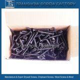 Parafusos de gesso de aço inoxidável a carcaça de 3,5X25mm C1022