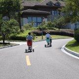 Ce aprobada plegado de tres ruedas Scooter de movilidad eléctrica