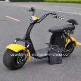 Il nuovo stile rimuove il motorino elettrico del motociclo di Harley Citycoco della batteria con Ce