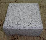 El granito gris del sésamo G603 embaldosa piedras de pavimentación de las losas de Gangsaw