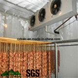 Conservación en cámara frigorífica, cámara fría, congeladora para el alimento y carne