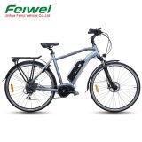 Bici elettrica del Metà di-Motore verde della città 700c da vendere (FR-TDB18Z)