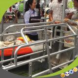 Embalaje de parto galvanizado de la jaula animal para la venta