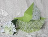 Potenciômetros de flor ovais verdes do jardim com punho