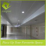Panneau de plafond en aluminium d'utilisation extérieure pour avec l'enduit de poudre de tigre