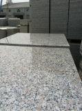 Fiore della perla G383 il granito più poco costoso per l'Ecuador