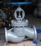 Il acciaio al carbonio A216wcb ha flangiato valvola di globo con la rf /Rtj