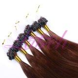 最もよい品質まっすぐに100%の人間の毛髪のマイクロリングのループ拡張