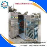 Produtos hortícolas frutas congeladas do chiller do congelador máquina para venda