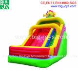 Riesige aufblasbare Wasser-Spiel-aufblasbares Wasser-Plättchen-Pool-Plättchen für Erwachsenen für Verkauf