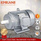 0,75 квт~90квт универсальный электродвигатель, высокую эффективность при работе на магнитных