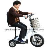 ثلاثة عجلات كهربائيّة عربة درّاجة ناريّة حركية [سكوتر] مع [س]